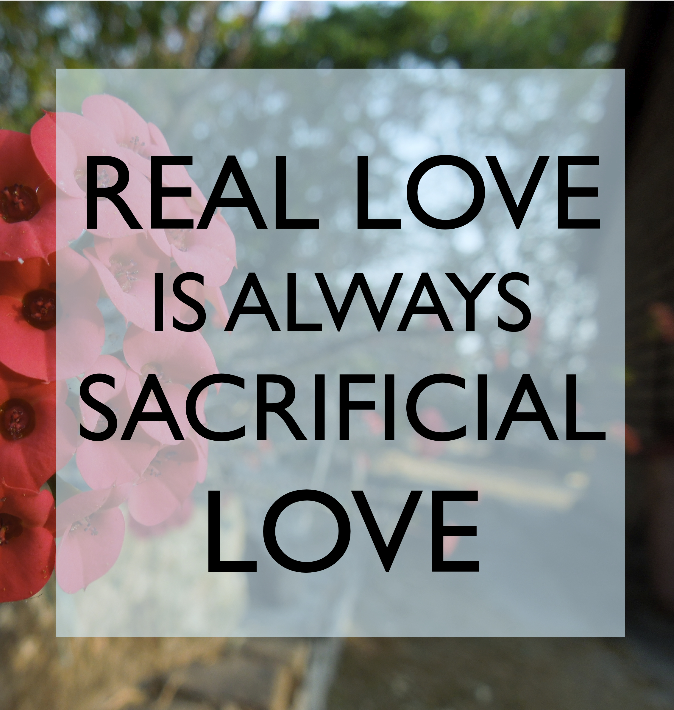 why love is not real